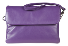 Anishka Clutch and Shoulder Bag